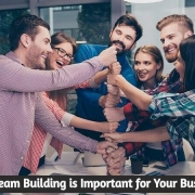 Why Team Building is Important for Your Business?