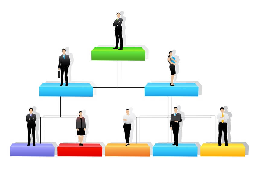 Analyze Organizational Structure